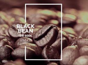 SW 6006 Black Bean