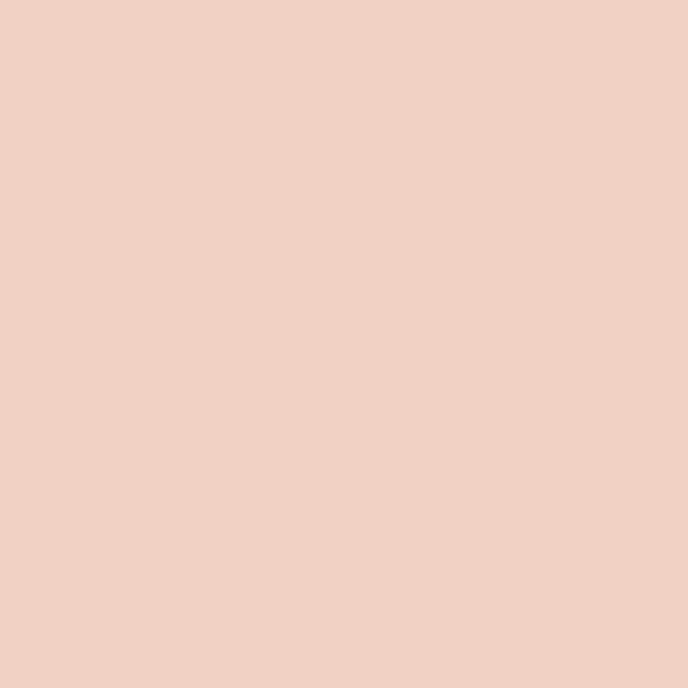 SW 6617 Blushing