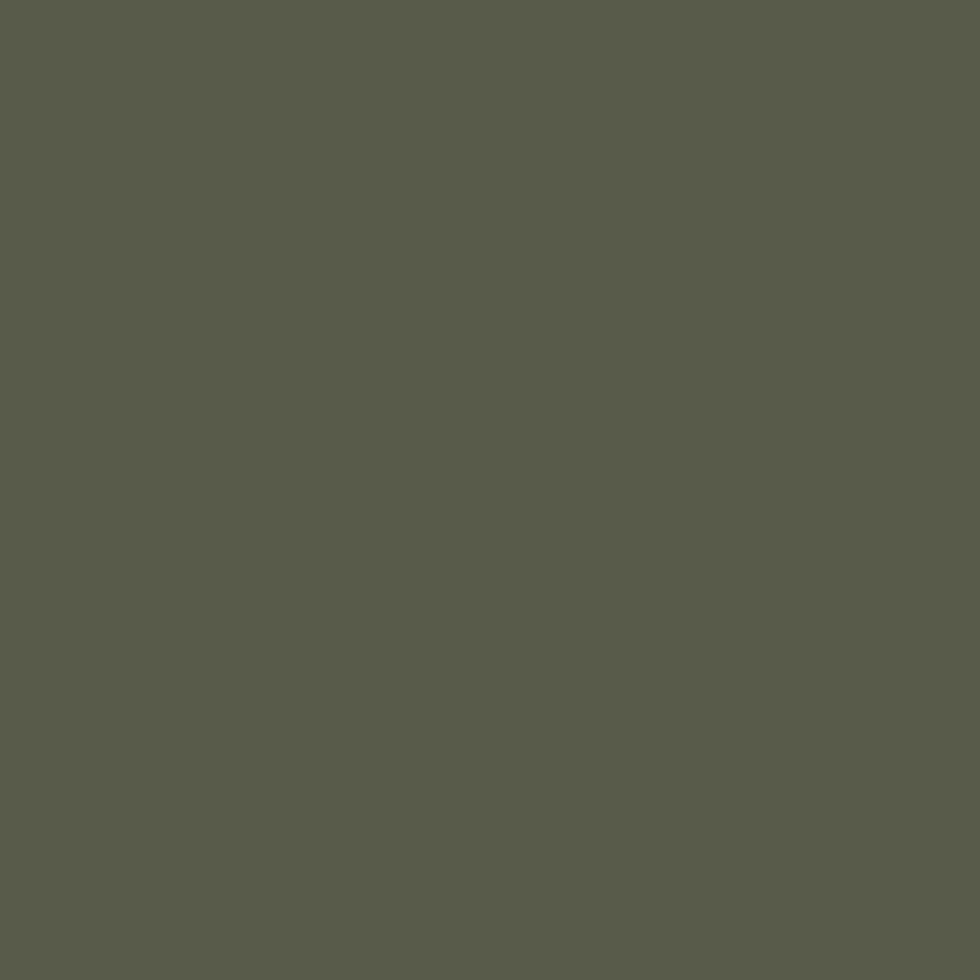 SW 2816 Rookwood Dark Green