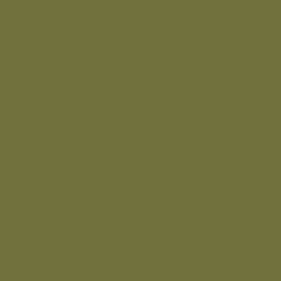 SW 6425 Relentless Olive