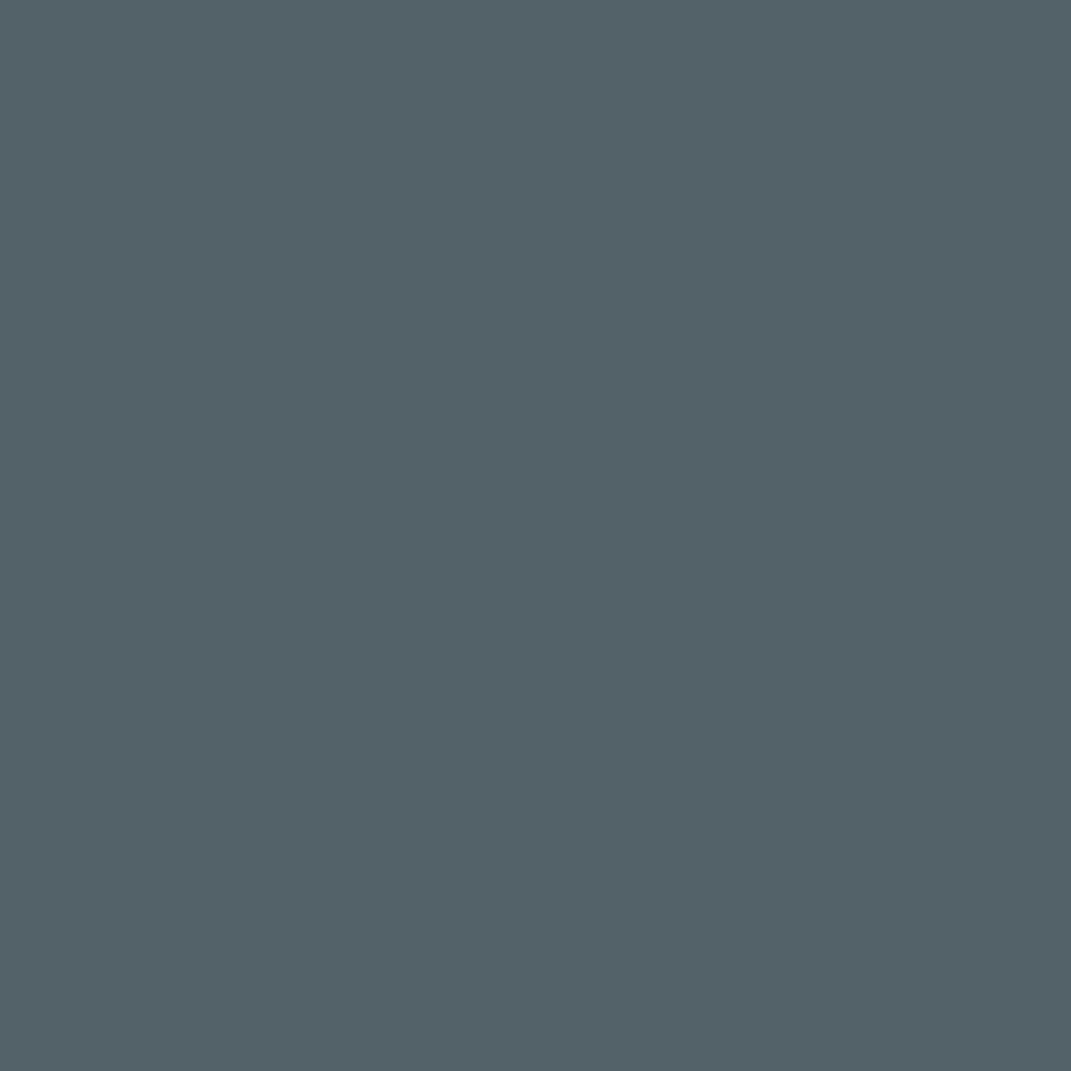 SW 9639 Rain Cloud