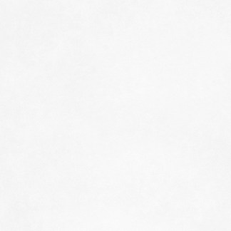 Малярный флизелин Rips Standart 5010-130