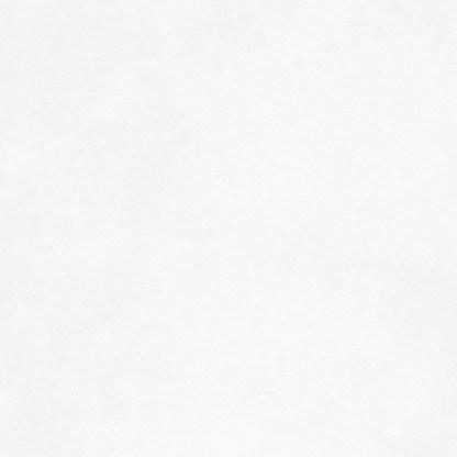 Малярный флизелин Rips Standart 5010-150