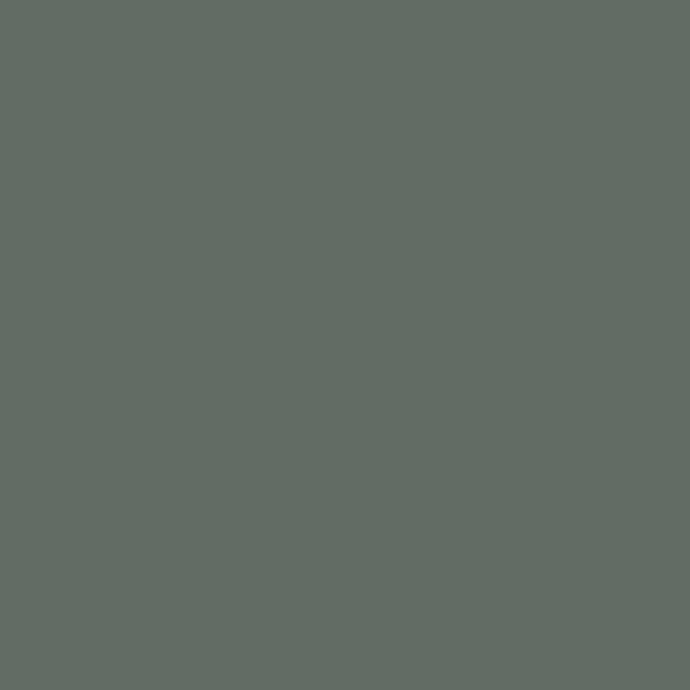 SW 9650 Succulent