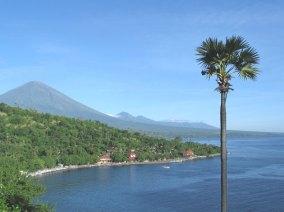 Bali_amed