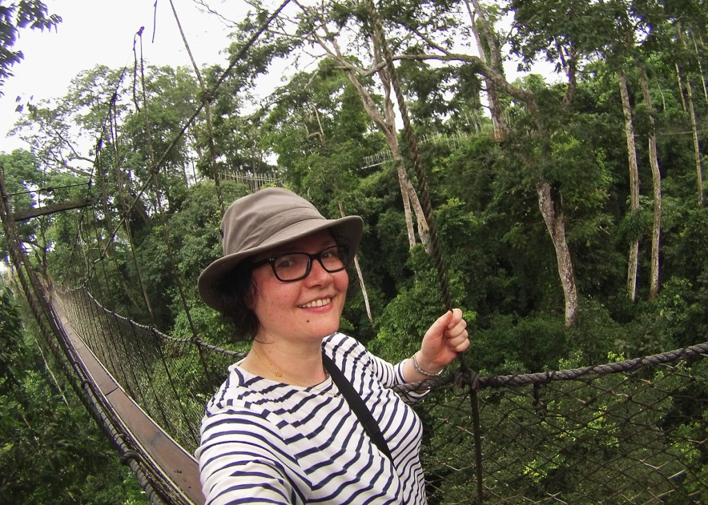 Walking a canopy walk