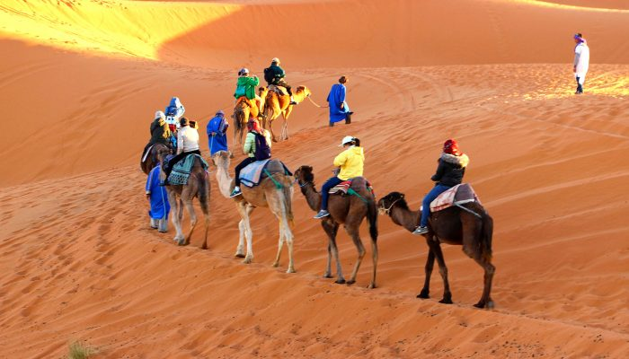 Darwish-Tour-Qatar-Sand-Dunes-Safari-01