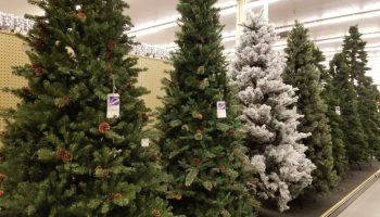christmas is already hereat hobby lobby anyways - Hobby Lobby Christmas Decorations Sale
