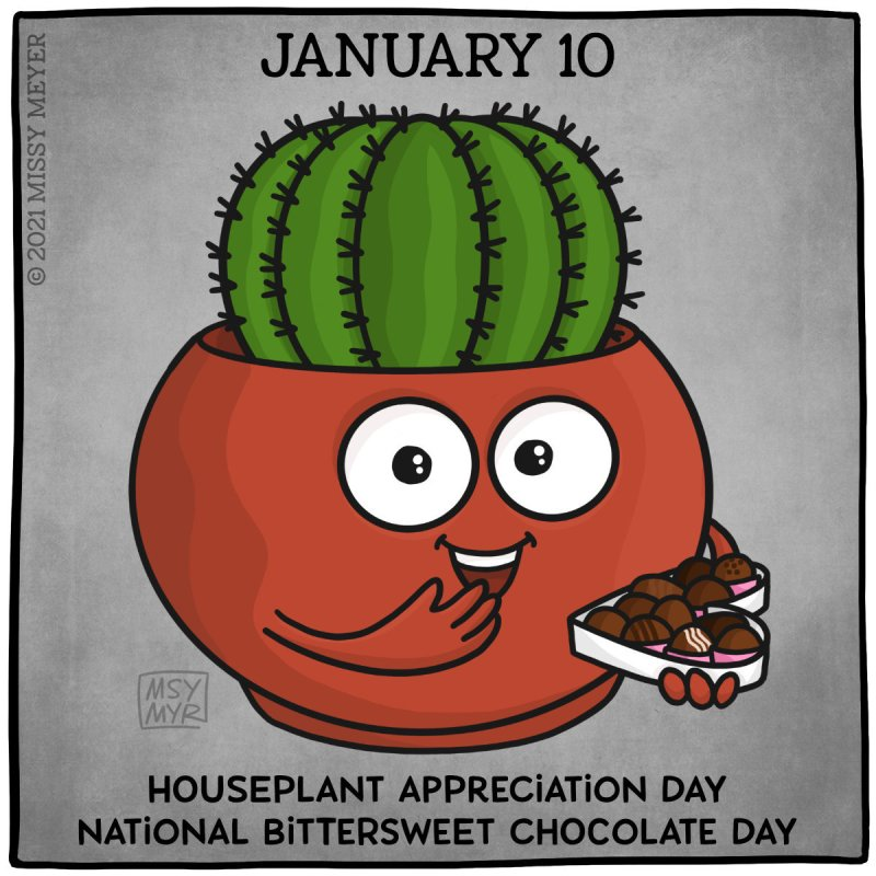 January 10 (every year): Houseplant Appreciation Day; National Bittersweet Chocolate Day