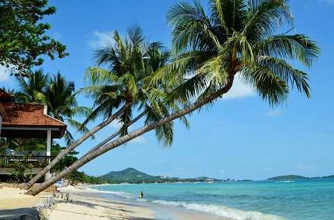 Отдых на островах Тайланда, остров Самуй