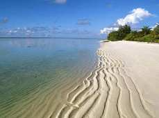 Отдых на Гоа, цены - удивительные пляжи Гоа,