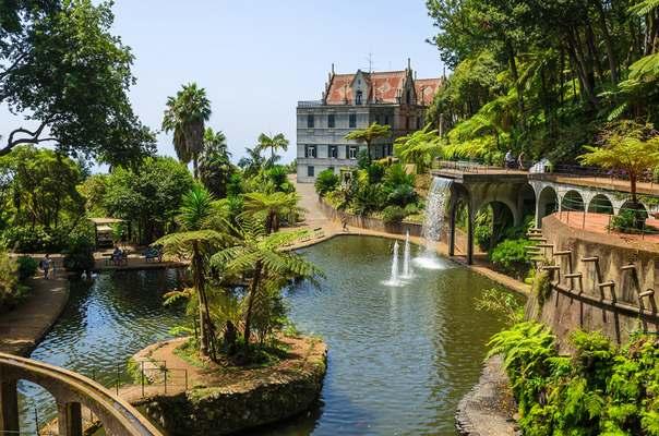 Мадейра отдых, цены - Дворец Монте