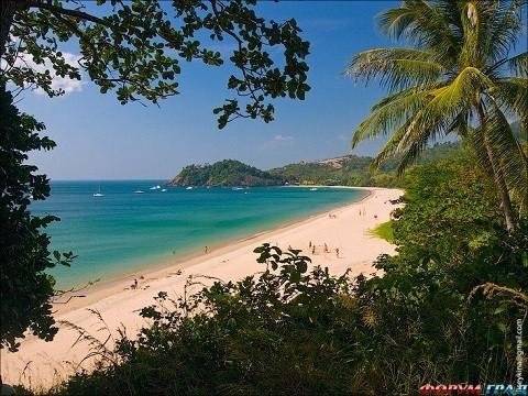 Отдых на канарских островах, утопающий в зелени остров Пальма