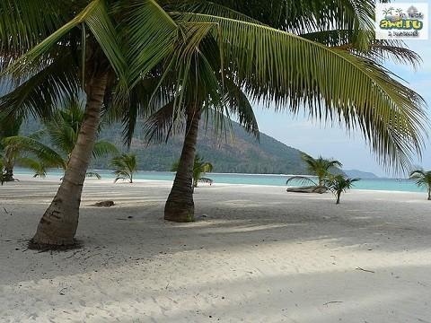 Отдых на островах Тайланда, Тао, самый посещаемый пляж острова Sairee Beach