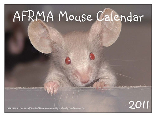 Small Animal Pet Organizations Unveil Their Fundraising Calendars ...