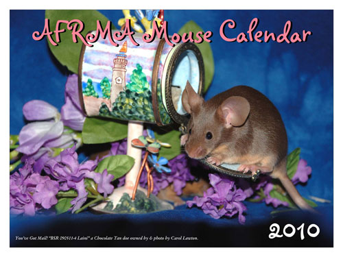 These Fundraising Calendars For 2010 Do More Than Feature Cute ...