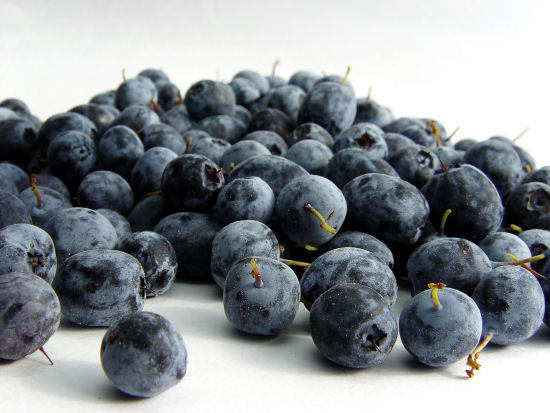 What is the month and date for Blueberry Day?