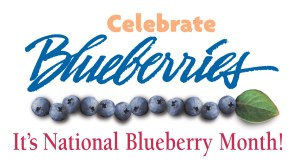 National Blueberries Month - funny national holidays?