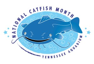 National Catfish Month - August is the ONLY calender month without a MAJOR holiday: Why has it never been claimed for any