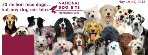National Dog Bite Prevention Week - Self-defense against dogs?