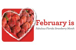 February is Fabulous Florida Strawberry Month - February is Fabulous Florida
