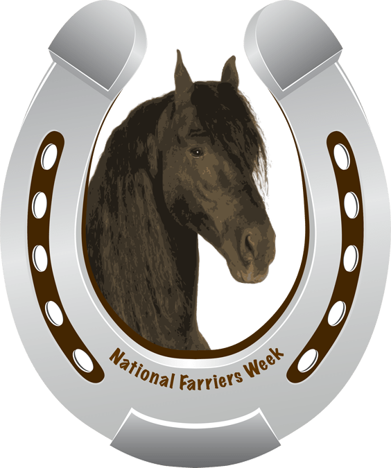 Question about equine farriers and dentists?