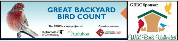 Anyone else planning on participating in the Great Backyard Bird Count?
