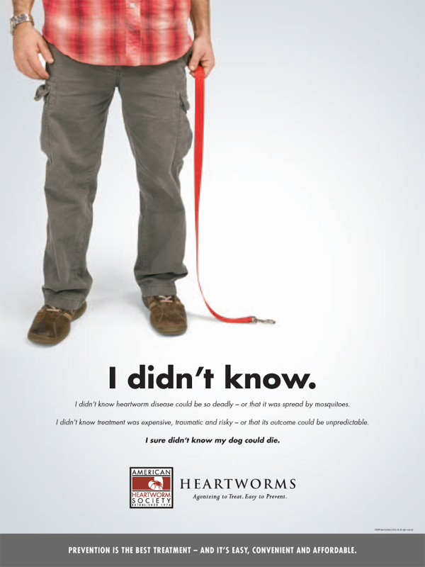 Animal Health Case Study for Heartworm Awareness and HEARTGARD ...
