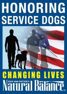 National Service Dog Month - Bernese Mountain Dogs?