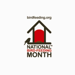 National Bird Feeding Month - Spiritually speaking, did you know that it is National Bird Feeding Month?