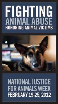 National Justice for Animals Week - How Do I Become an Animal Cruelty Investigator?