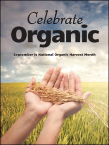 National Organic Harvest Month - What does organic mean?