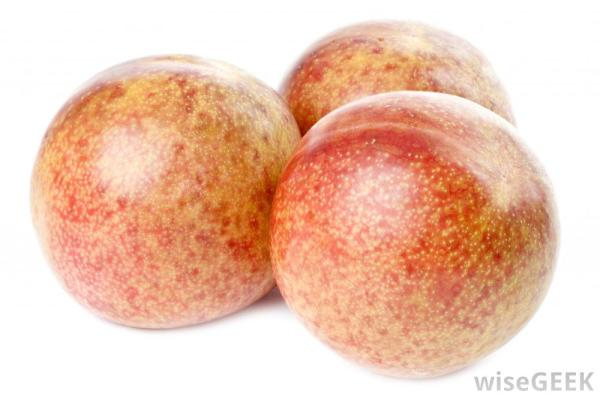 What is the Difference Between a Pluot and an Aprium