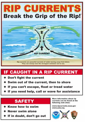 Rip Current Awareness Week - Questions on Anorexia?