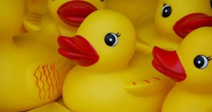 Rubber Duckie Day - Does a rubber-duckie…?