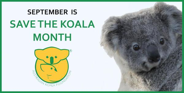 Would you please help save Australia's Koalas?