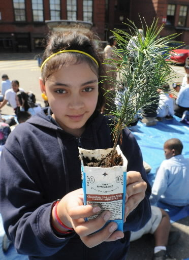Paperboard Packing Council teams with Arbor Day Foundation to ...