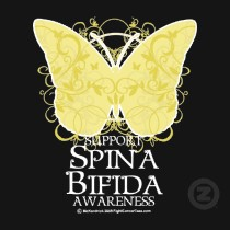 National Spina Bifida Awareness Month - Can you read over this before its posted?