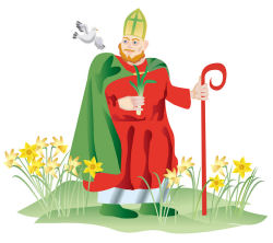 Saint David's Day - Why do we have a Saint David's day?