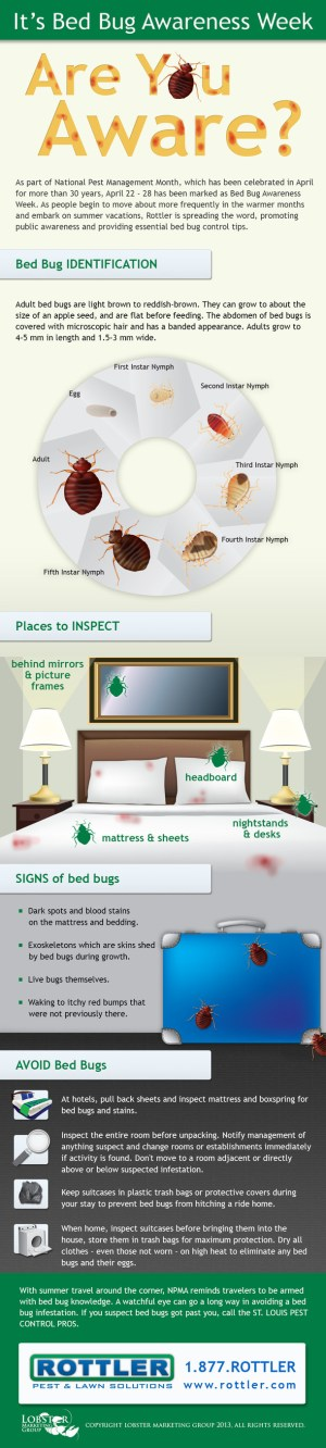 Bedbug Awareness Week - Blog - St. Louis Pest Pros Recognize Bed Bug Awareness Week