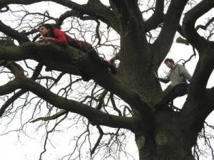International Tree Climbing Days - What holidays are on August 3rd?