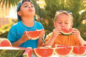 Watermelon Seed Spitting Week - can you eat seeds in fruit while pregnant?