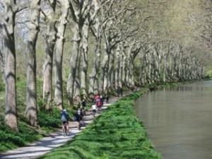 Family cycle along the Canal du Midi