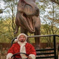 Guest Blog Post: Christmas at Paradise Wildlife Park