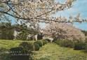 Kiryu Friary - Retreat House #3