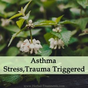 Herbal Medicine for Asthma - Stress or Trauma Triggered