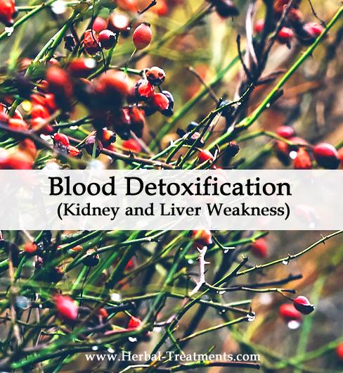 Herbal Medicine for Blood Detoxification - Kidney and Liver Weakness