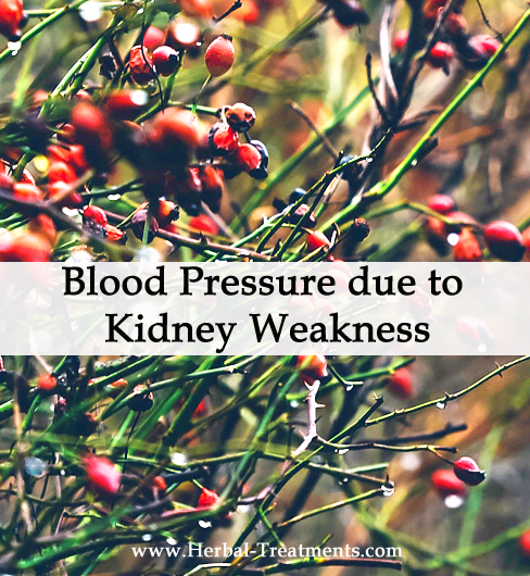 Herbal Medicine for Blood Pressure due to Kidney Weakness