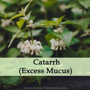 Herbal Medicine for Catarrh (Excess Mucus)