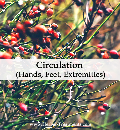 Herbal Medicine for Circulation to Hands, Feet, Extremities